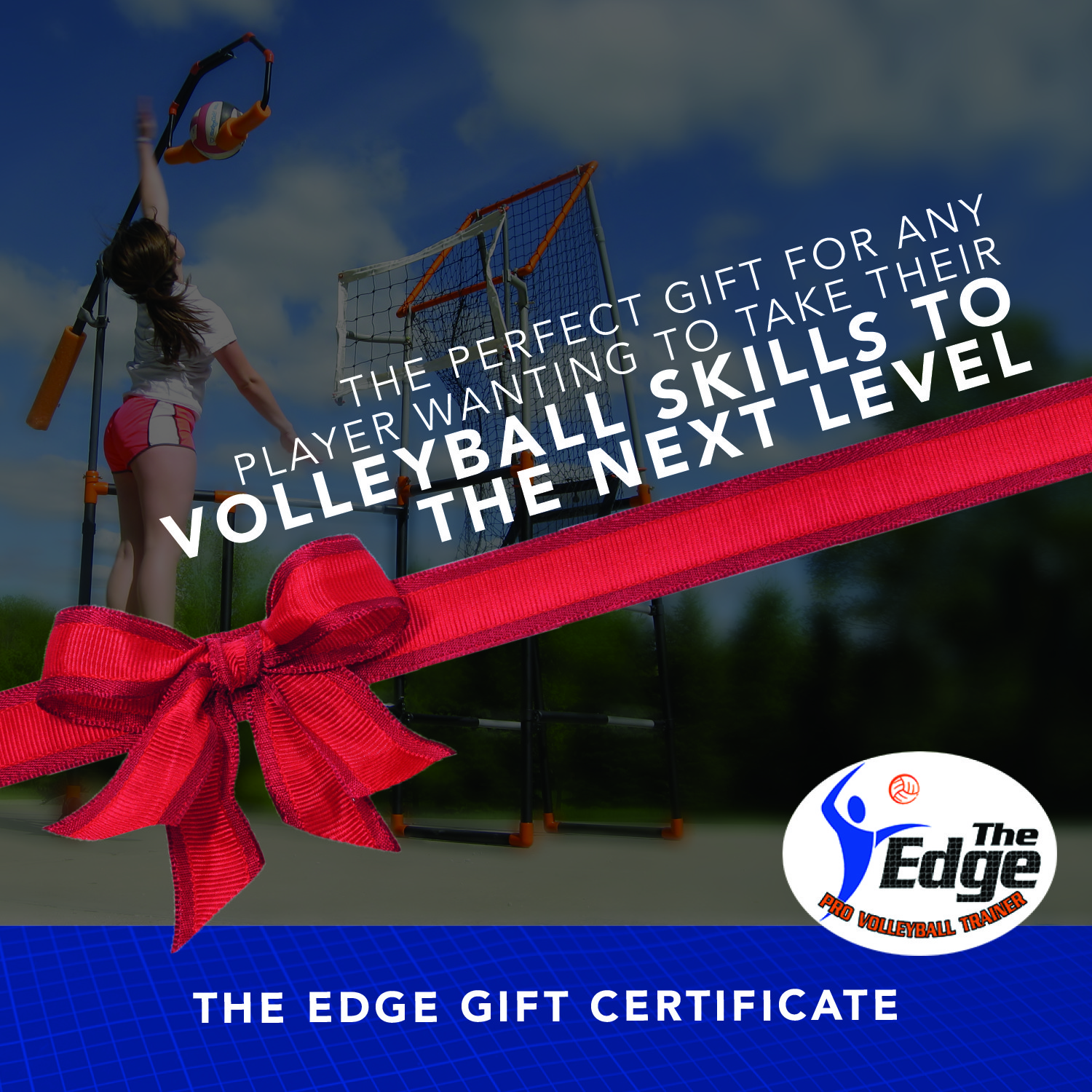The Edge Pro Volleyball gift card